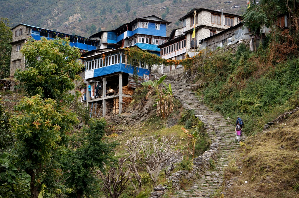 Ghorepani, during Poon Hill Yoga trek
